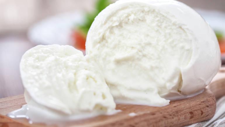 500 anni di Mozzarella di Bufala